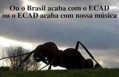 Colecionador de Frases: Ou o Brasil acaba com o ECAD ou o ECAD acaba com nossa música