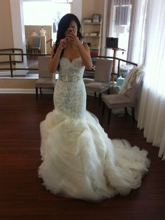 Wow, the THE most beautiful dress I have ever seen!!!