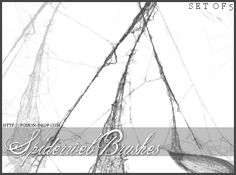 Spiderweb Brushes by poisondropstock.deviantart.com on @deviantART Free Spider, Web Layout, Photoshop Brushes, Best Songs, Photo Manipulation, Brush Set, Dark Art, Fairy Tales, Digital Art