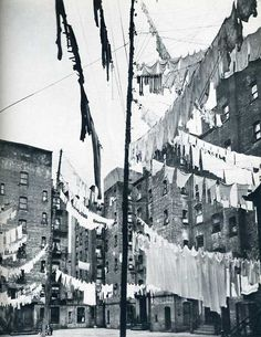 city clotheslines