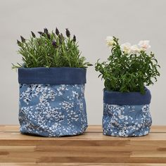 Shop for blue floral plant pot accessories for your home by UK designer Lorna Syson. Bird and Floral plant pots, exclusive designs for bedroom, kitchen or any living space. Great for indoor plants and kitchen herbs. Blue Plants, Potted Plants, Indoor Plants, Bird Design, Floral Design, Kitchen Herbs, Perfect Plants, Colorful Birds, Waterproof Fabric