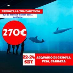 JLAND TRAVEL: GITA ACQUARIO DI GENOVA , PISA E CARRARA DAL 22 AL...