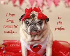 Valentine Pug
