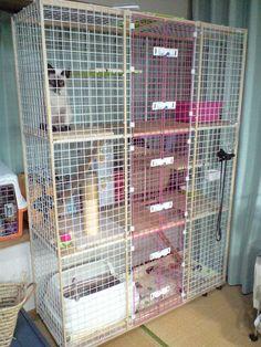 猫 室内飼い 爪とぎ 自作 ケージ 作り方 Vol.2 の画像|gizaの記録帳