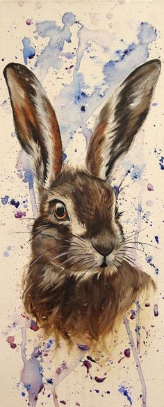 animal paintings Hare portrait watercolor painitng Hare portrait watercolor p Rabbit Drawing, Rabbit Art, Bunny Rabbit, Watercolor Animals, Watercolor Paintings, Acrylic Painting Animals, Watercolor Painting Tutorials, Watercolor Splatter, Splatter Art