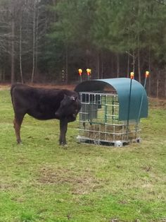 think I just wasted $60... NOPE!!! MINI HAY FEEDER DONE | Keeping A Family Cow