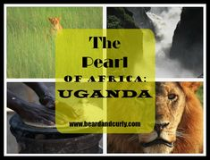 The Pearl of Africa: Uganda