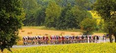 Tour of France in Provence
