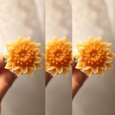 앙금꽃피우기~ 소국 천연가루조색  naturalpowder bean paste flower class  bean flower  #대구플라워케이크…