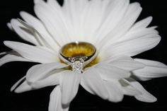 My .51 Tolkowsky engagement ring   Color: F  Cut: princess  Clarity: VS2  Cut grade: ideal