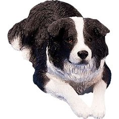 Sandicast Original Size Black and White Border Collie Sculpture, Lying by Sandicast. $44.71. Every Sandicast sculpture is hand cast and carefully hand painted with uncompromising attention to detail. Designed by world-renowned animal sculpture artist sandra brue; animals are available in several sizes and a variety of sizes and poses. Sandicast invites you to discover their world-renowned collection of finely sculpted dogs, cats, wolves and exotic animals available on amazo...