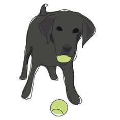 Items similar to Black Labrador Retriever Print - Modern Dog Art in Mat on Etsy Tennis Pictures, Tennis Funny, Rocket Dogs, Black Labrador Retriever, Labradoodles, Dog Things, Play Tennis, Black Labs, Dog Art