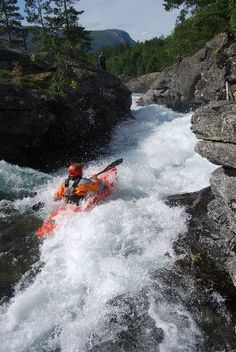 blue pine outdoors | What would it take to get you to #Paddle this?