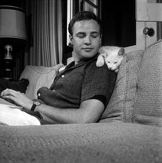 Marlon Brando with His Cat