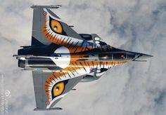 Dassault Rafale C/Rafale B NATO Tiger Meet 2013