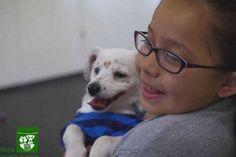 Esta es la historia real de una niña de 10 años que nació sorda y de un cachorrito de 7 meses q...