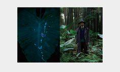 Needles' Spring/Summer 2014 Lookbook Will Instill Wanderlust and the Desire to Dress Better | Complex