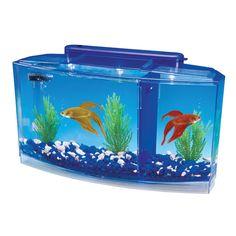 Penn Plax Deluxe Triple Betta Bow Aquarium Tank 2 Color Lights System Latest Fish Tank - Fish Tank for sales Mini Aquarium, Aquarium Kit, Aquarium Fish Tank, Fish Aquariums, Betta Fish Tank, Beta Fish, Aquarium Ornaments, Aquarium Decorations, Small Fish Tanks