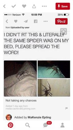 "Omg omg omg!!! I HATE SPIDERS!!! I YELL"" BURN HIM SMASH HIM AND I WANT HIM AND HIS FAM DEAD"". Then I hop up on my bed and yell for my mom and dad bc I am so scared!!!"