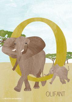 Het alfabet. 26 letters. Elke week een illustratie voor kinderen. Dat wordt mijn project voor een half jaar. Elke week kies ik een dier uit. Hierbij hou ik me niet aan alfabetische volgorde, zodat het een verrassing blijft. Uiteindelijk heb ik leuke plannen met het complete alfabet. Daarover later meer. Nu eerst tijd voor de O, van olifant. Een prachtig beest, vind ik. Het grootste dier op land. Wist je dat een mannetje wel 7000kg kan worden? Learning The Alphabet, Fun Learning, Elmer The Elephants, Letter School, Alfabeto Animal, Spelling Games, Abc For Kids, Free Preschool, Activities For Kids