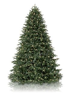 120. 6ft Nobilis Fir Feel-Real Artificial Christmas Tree This 6ft ...