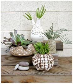 Rancho Reubidoux Coil Pots awesome blog also detailing lots of gardening ideas