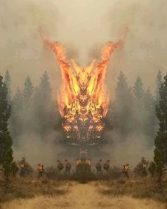 Mirrored forest fire image looks like crazy fire demon thing