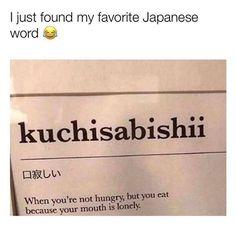 Crazy Funny Memes, Really Funny Memes, Stupid Funny Memes, Funny Relatable Memes, Funny Texts, Hilarious, Funny Stuff, Random Stuff, Japanese Quotes