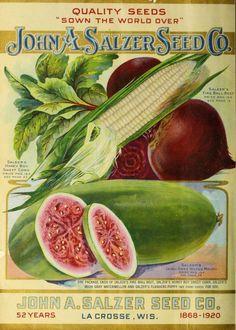 John A. Salzer Seed Company Catalogue :
