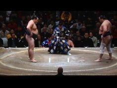 January 2016 - Day THREE - Kakuryu v Aminishiki - YouTube