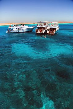 Giftun island - Red Sea - Egypt