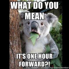 Hour forward