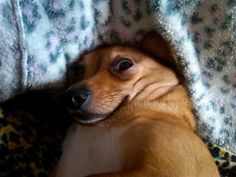 When your front camera catches you off guard