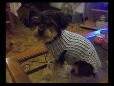 Tuto facile manteau pour chien au crochet, My Crafts and DIY Projects
