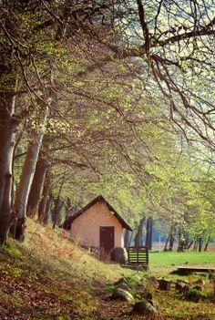 Little House, Island Cieszyno