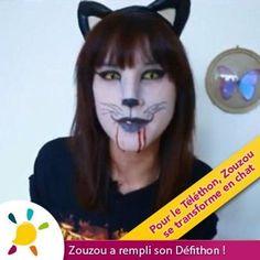 Halloween Face Makeup, Organiser, Cat Breeds