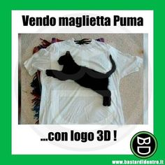 Funny Photos, Funny Images, Cat Pose, The Ugly Truth, Funny Video Memes, Funny Pins, Funny Moments, Funny Animals, Laughter