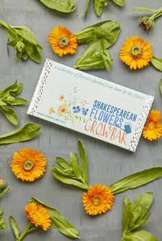 Shakespearean Flowers Growbar – Blightys English Gifts, Flower Bar, Sweet Violets, Twelfth Night, Growing Seeds, Business Gifts, Corporate Gifts, Thoughtful Gifts, Gifts For Her