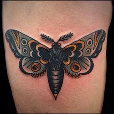 Moth by Jason Donahue