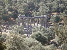 Milas - Euromos Temple Of Zeus(2) By Semra Taner