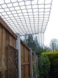cat fencing ..will keep them in...