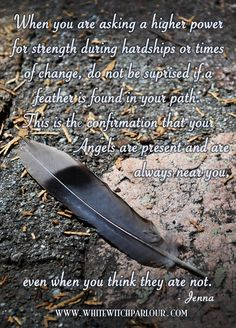 finding a feather in your path. angels are present and are always near you, even when you think they are not. Feather Signs, Feather Quotes, Feather Tattoos, Art Tattoos, Affirmations, Native American Wisdom, Native American Proverb, American Crow, Spirit Guides
