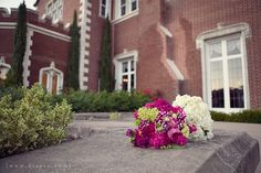 Kohl Mansion wedding venue photo by Dia Rao Photography