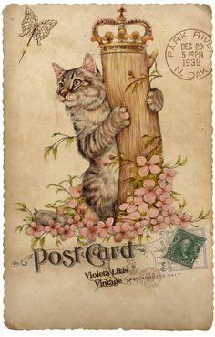 Violeta lilás Vintage: Cartões Postais Antigos - Animais