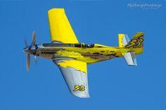 P-51 Survivor 87-4488 N6WJ