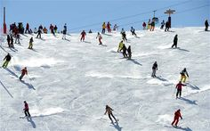 Get your alignment right before your holiday and you'll be carving a perfect 'S' down busy pistes
