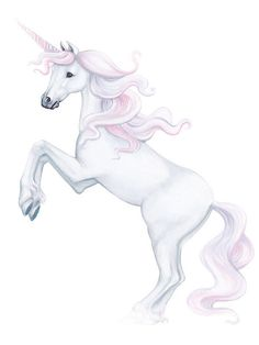 STUNNING HAND PAINTED MURAL AT THE PRICE OF WALL DECALS Unicorn Wall Decal , Castle, Clouds & Rainbow Wall Stickers, Wall mural SIZES: Unicorn: 34 x 33 Castle on a Cloud: 36 x 23 8 Various sized Clouds (includes castle cloud): 13.5 x 9 13 x 8 13.5 x 8.5 19 x 11.5 20.5 x 11 22 x 13 70