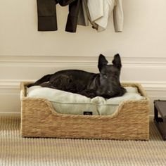 Dog Bed Ballard Designs