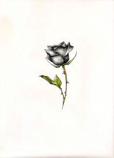 Small Black Rose Tattoos For Women \x3cb\x3eblack rose tattoos\x3c/b ...