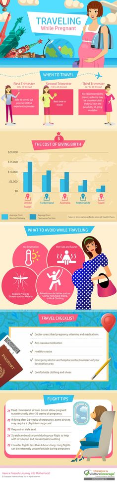 #Infographics about traveling while pregnant - great information and tips for expecting mothers planning a trip!